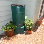Saving Money With a Rain Barrel