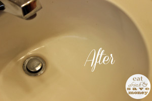 ecloth after picture sink