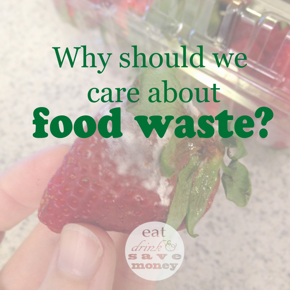 Why should we care about food waste_edited-1