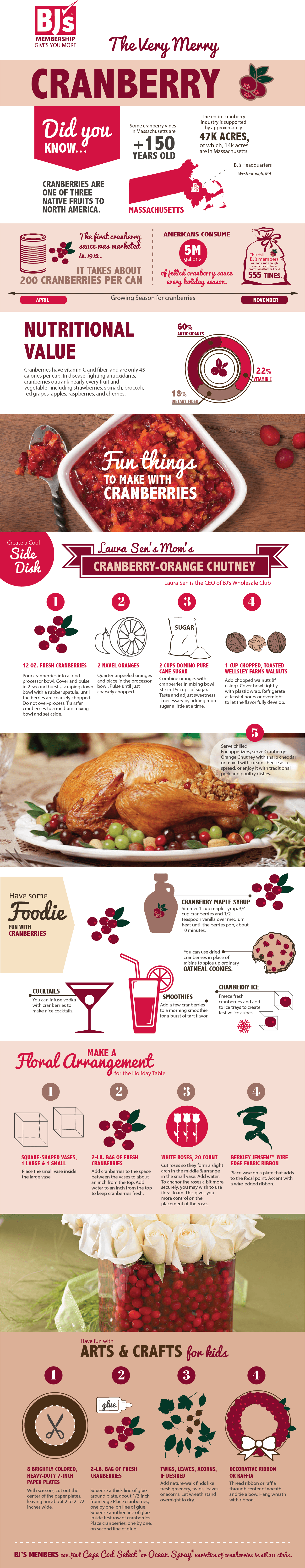 BJ's Cranberry Infographic Final