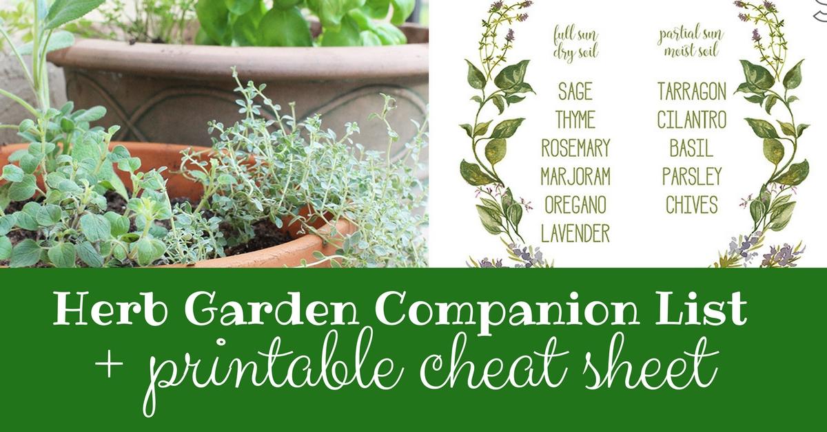 Good Herb Garden Companion List