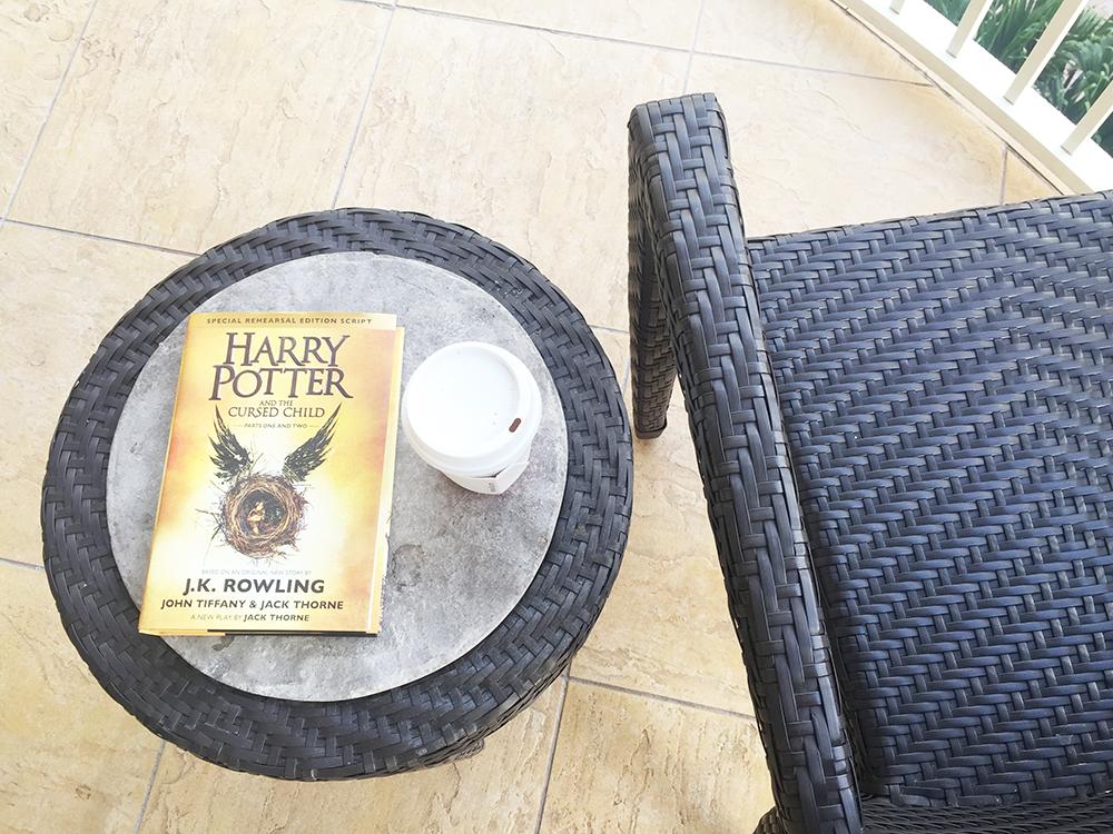 Harry Potter beach book