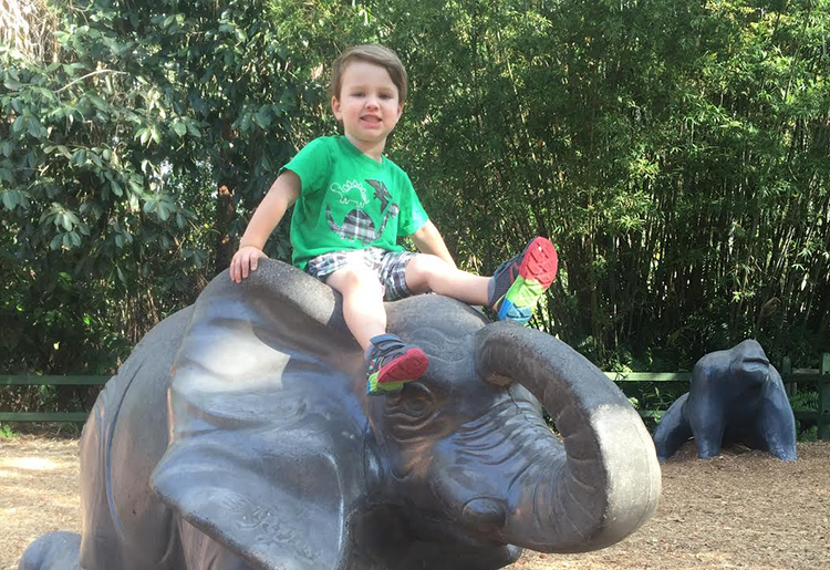 Playing at the Naples zoo. Not only do they have tons of animals, they have two play areas for kids. Photo Credit- Hannah Rinaldi