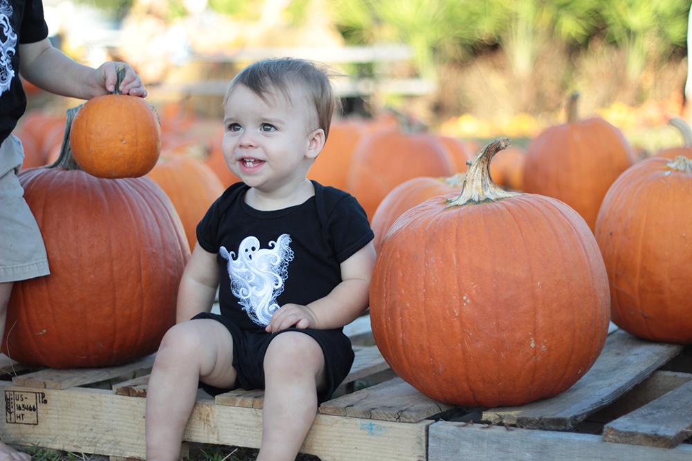 jackson-getting-a-pumpkin-from-robert