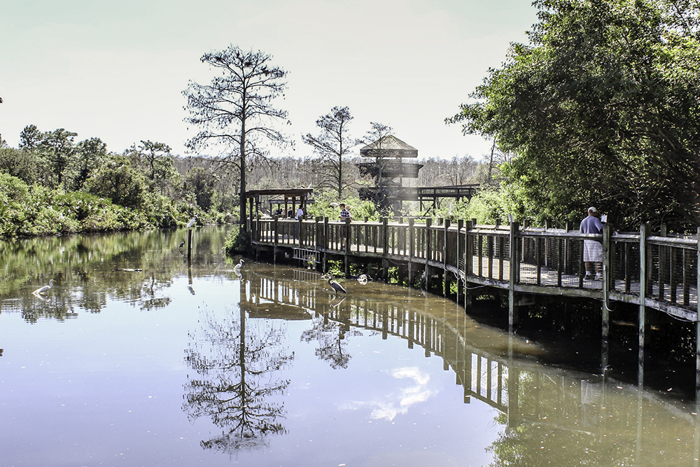 Family Activities in Orlando- the boardwalk at Gatorland