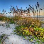 Daytona Beach: An Affordable Weekday Getaway
