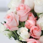 VivaRoses Review: A Great Deal on Roses Delivered to Your Door