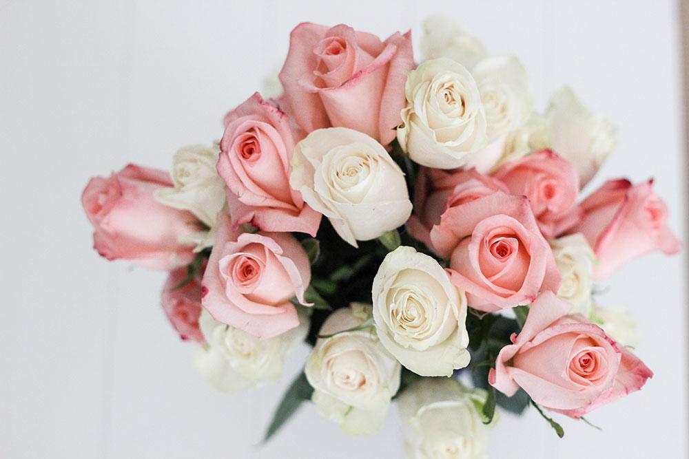 VivaRoses-roses-are-beautiful