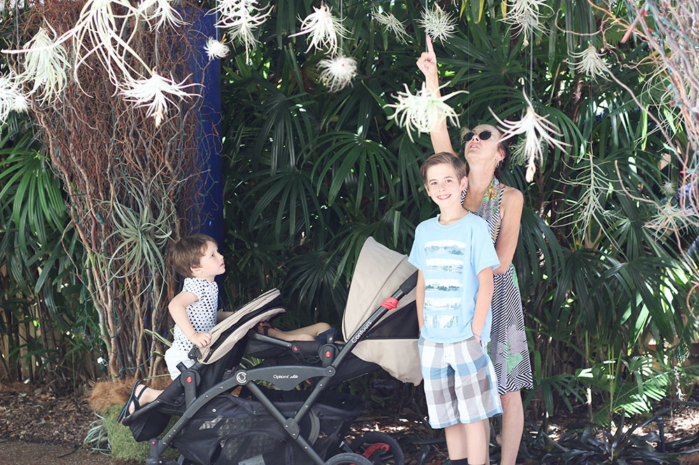 7 affordable things to do with kids sarasota fl family - Marie selby botanical gardens coupon ...