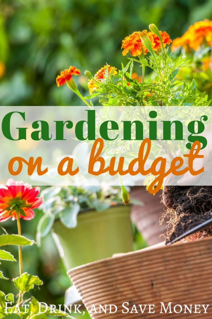 Gardening on a budget. Check out these tips for how to start a garden on a budget. #garden #gardening