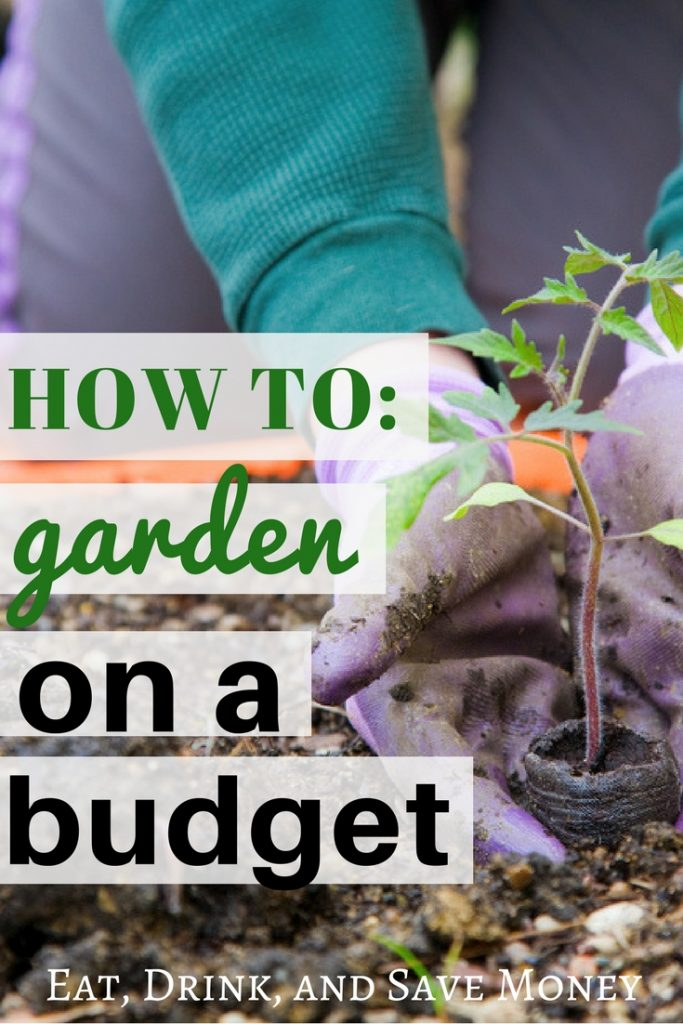How to garden on a budget. Check out easy tips for gardening on a budget and how to save money on a garden. #gardening #garden #savemoney #onabudget