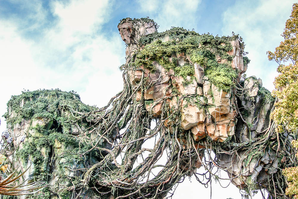 The world of Avatar Mountain Pandora landscape in Animal Kingdom