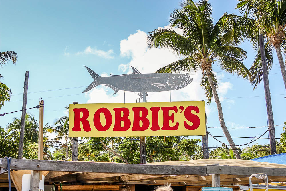 Feed the fish at Robbies in Islamorada. What to do in The Upper Keys