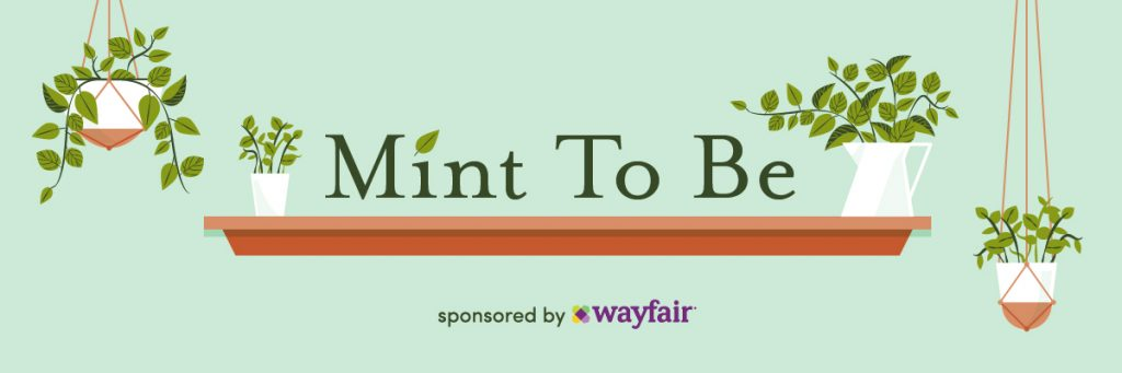 Mint to Be How to Plant an Indoor Herb Garden