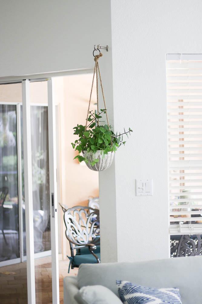 Hanging herb garden in kitchen-7