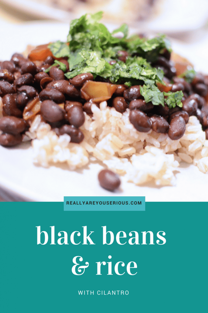 black beans and rice recipe from really are you serious