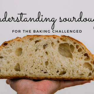 understanding sourdough for the baking challenged