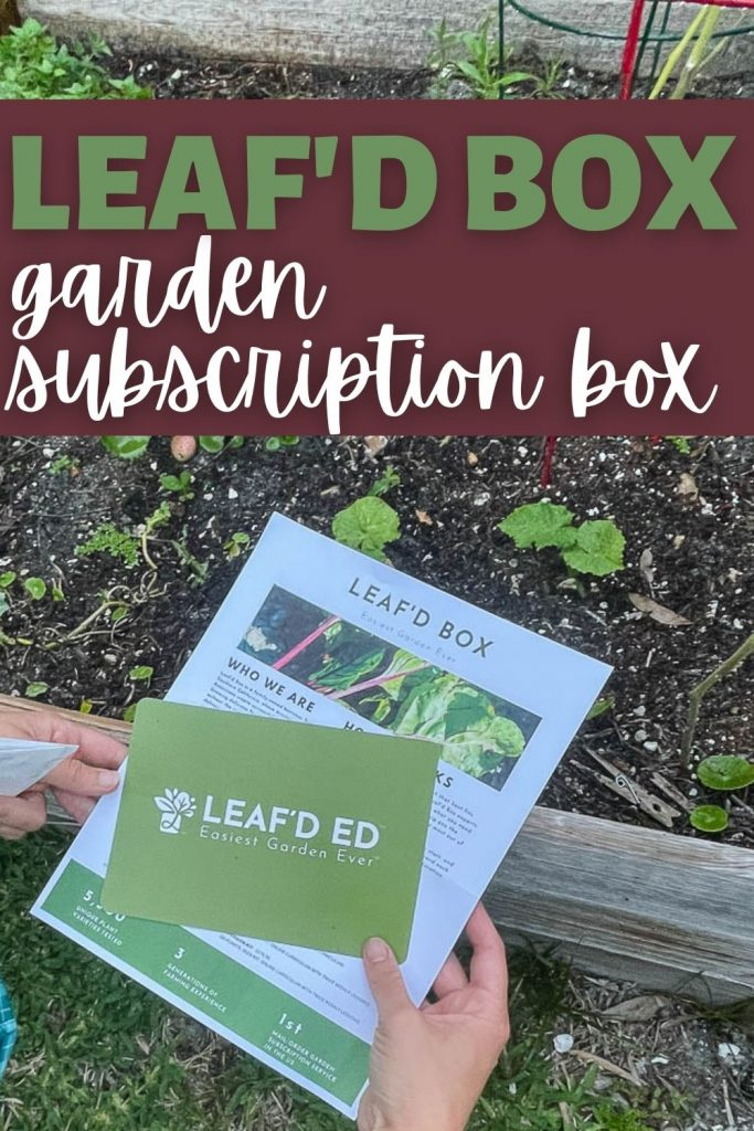 Leaf'd box review